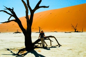 900 year old acacia trees in Deadvlei