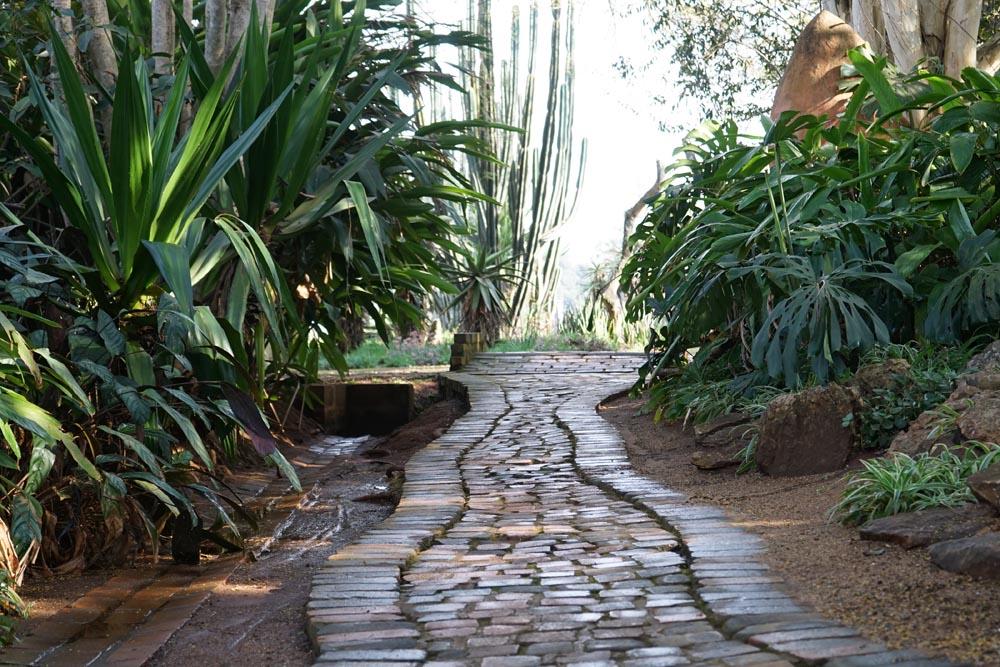 pathway-6