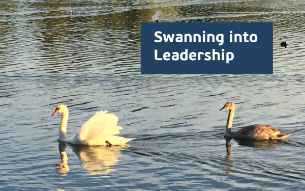 swanning-into-leadership How to make the shift from management